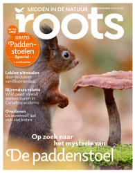 Cover Roots magazine November 2014