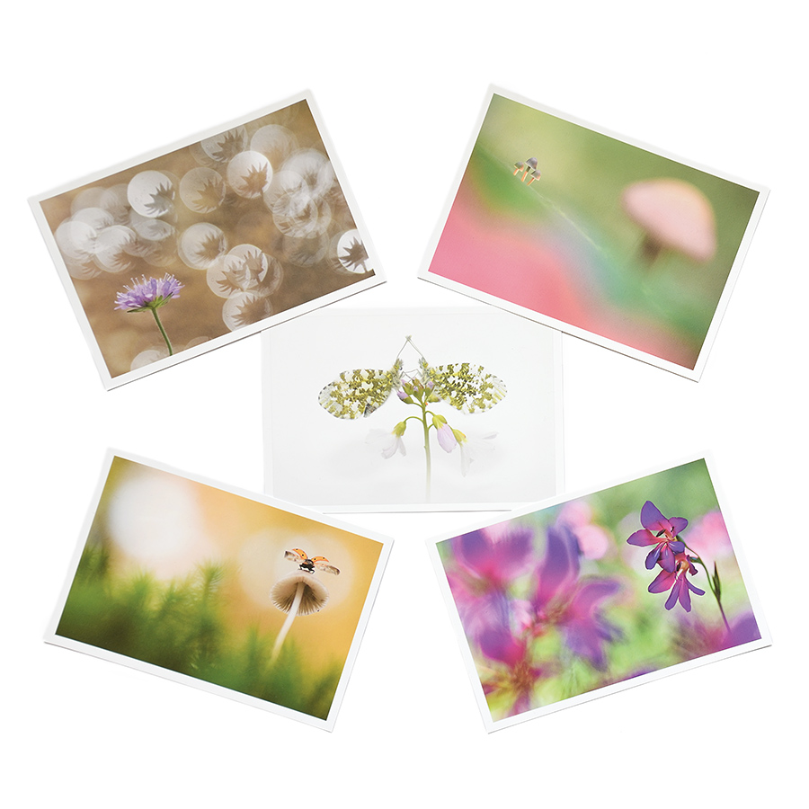 vervolgpagina products postcards